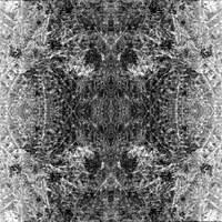 Fotomontage aus 2 Bildern in SW mit symmetrischer Spiegelung