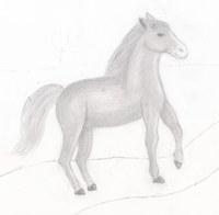 Das sollte eigentlich ein vollständiges Bild mit Landschaft werden, aber nach dem Pony blieb es 2-3 Jahre unvollendet...